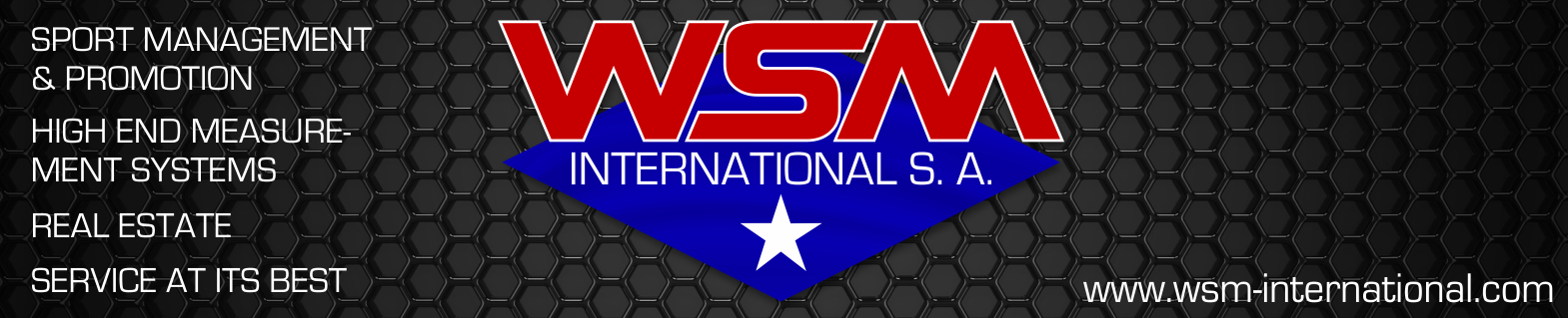 WSM International S.A. Logo